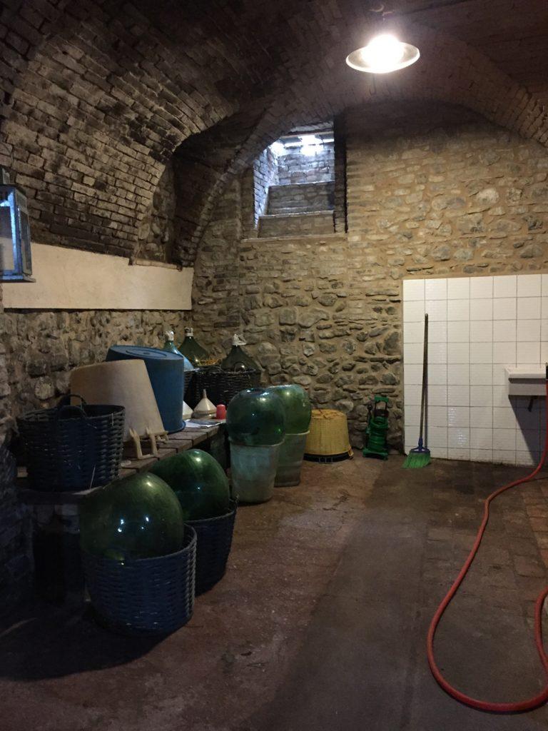 Bologna, Valsamoggia - Viinitarhoja ja koirahommia 43