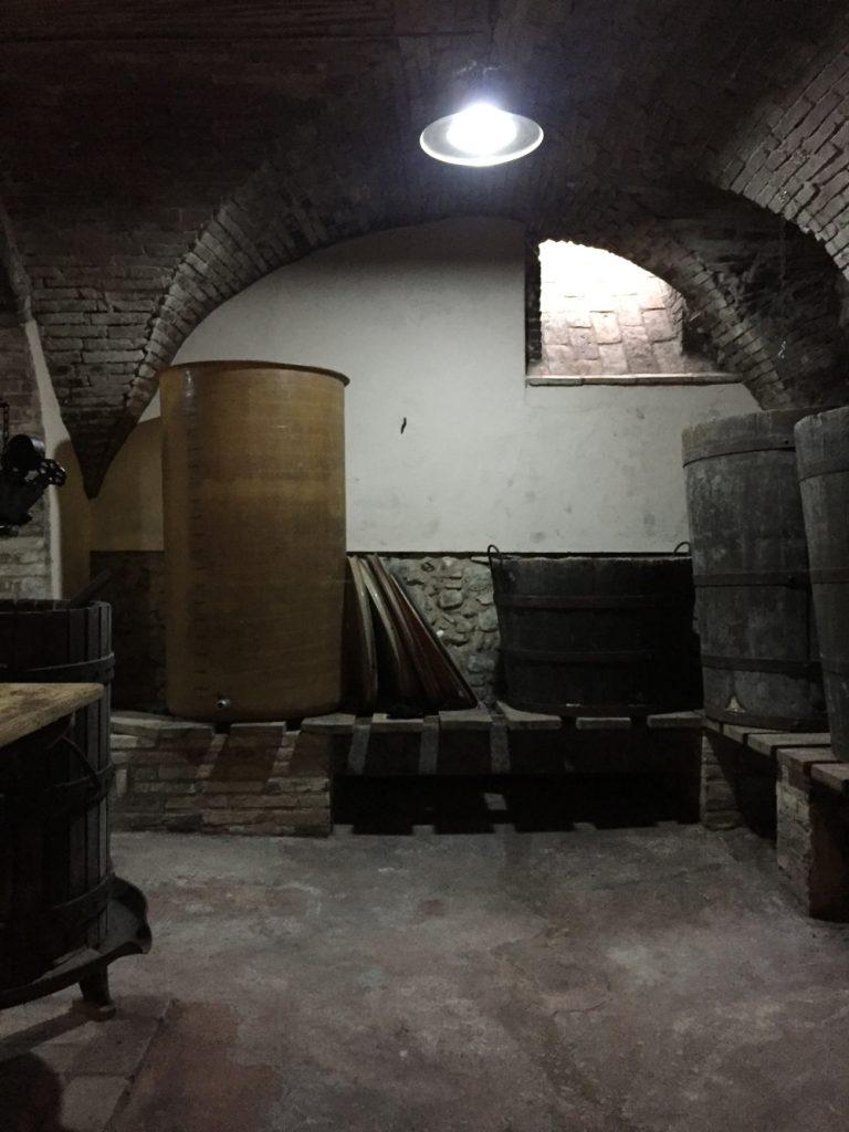 Bologna, Valsamoggia - Viinitarhoja ja koirahommia 44