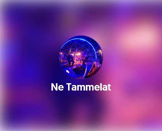 Me Tammelat 5