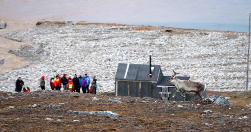 Huippuvuoret Svalbard