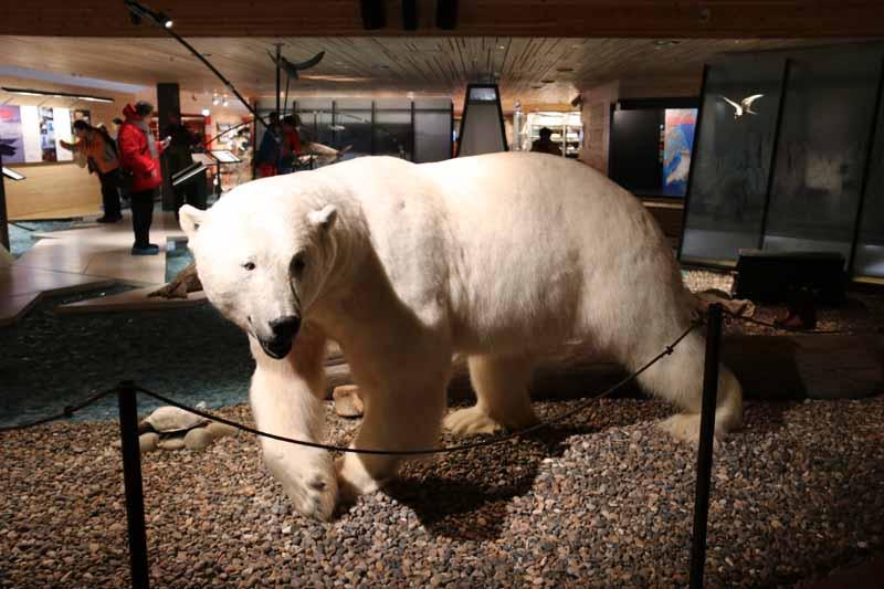 Svalbard museo