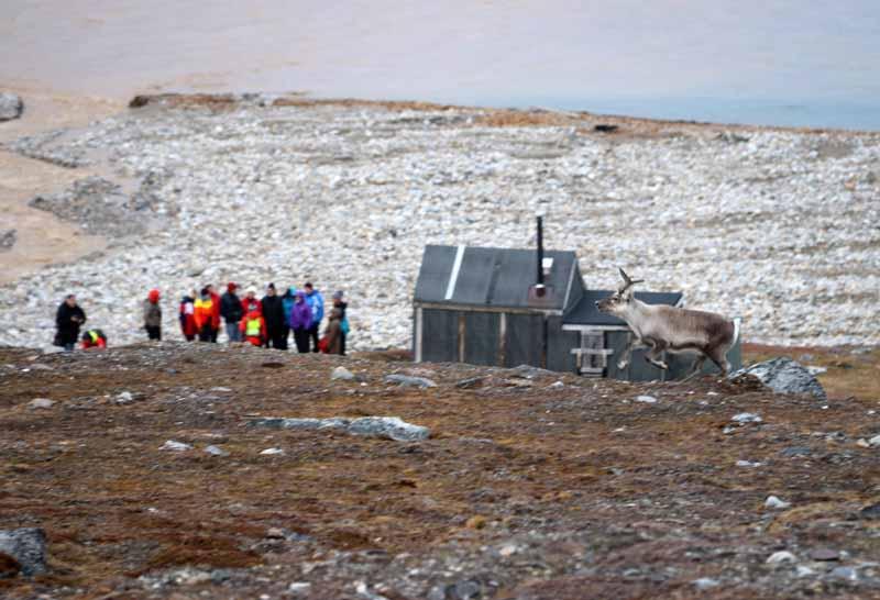 Tutkimusristeily Huippuvuorilla, päivä 3 12
