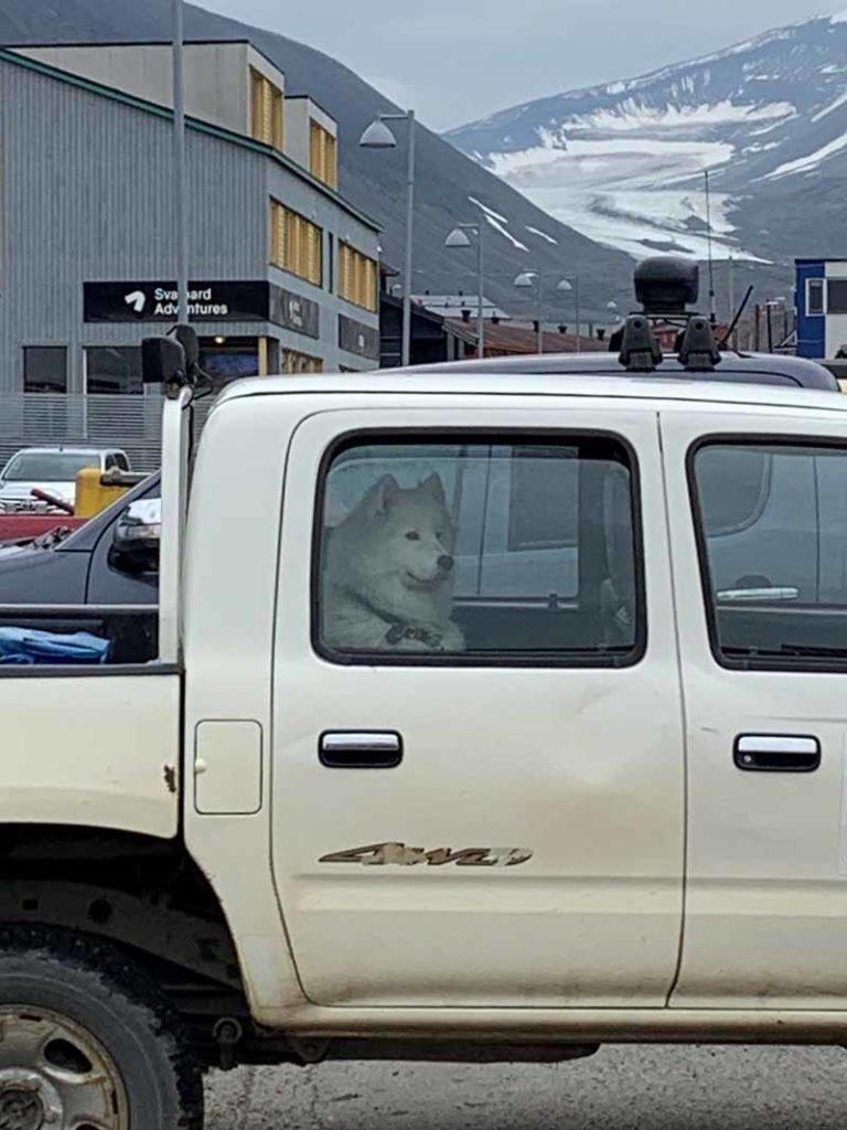 Huippuvuoret, Longyearbyen 6