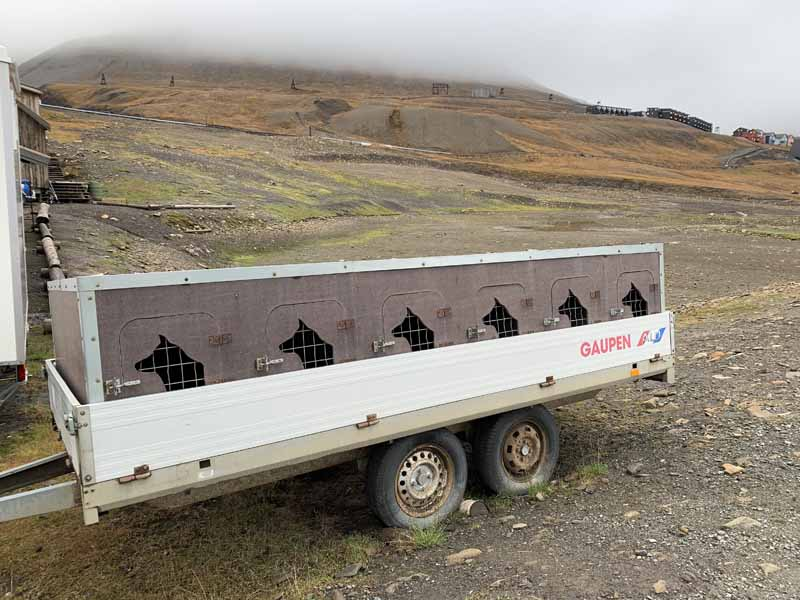 Huippuvuoret, Longyearbyen 7