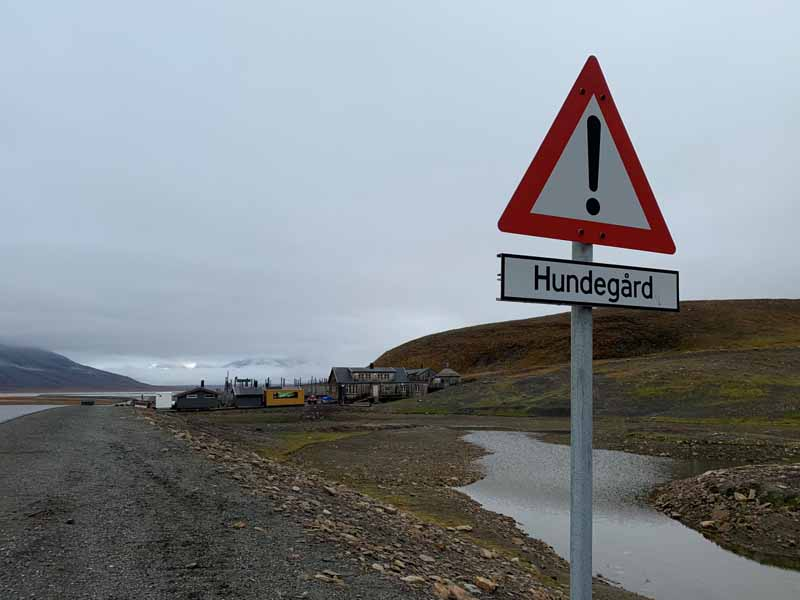 Huippuvuoret, Longyearbyen 8