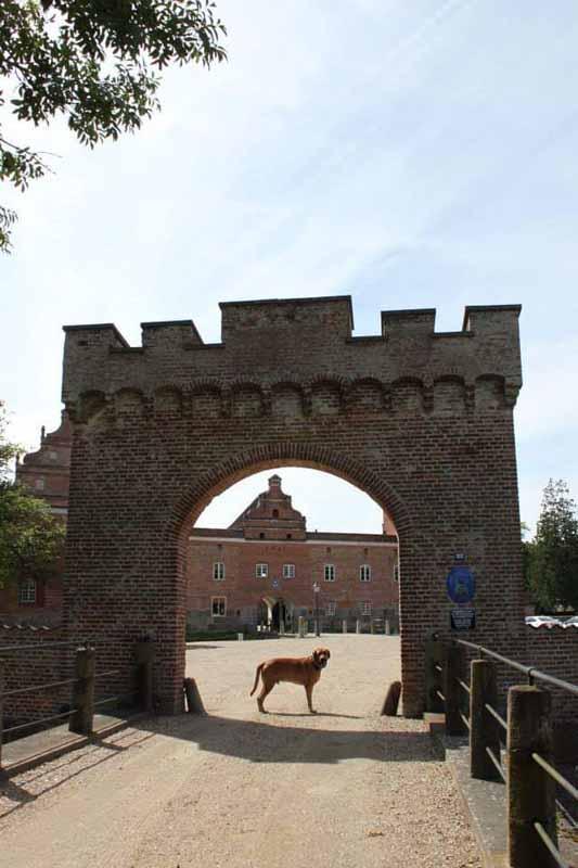 broholminkoira broholmer Broholm linna slot Fyn Tanska Denmark