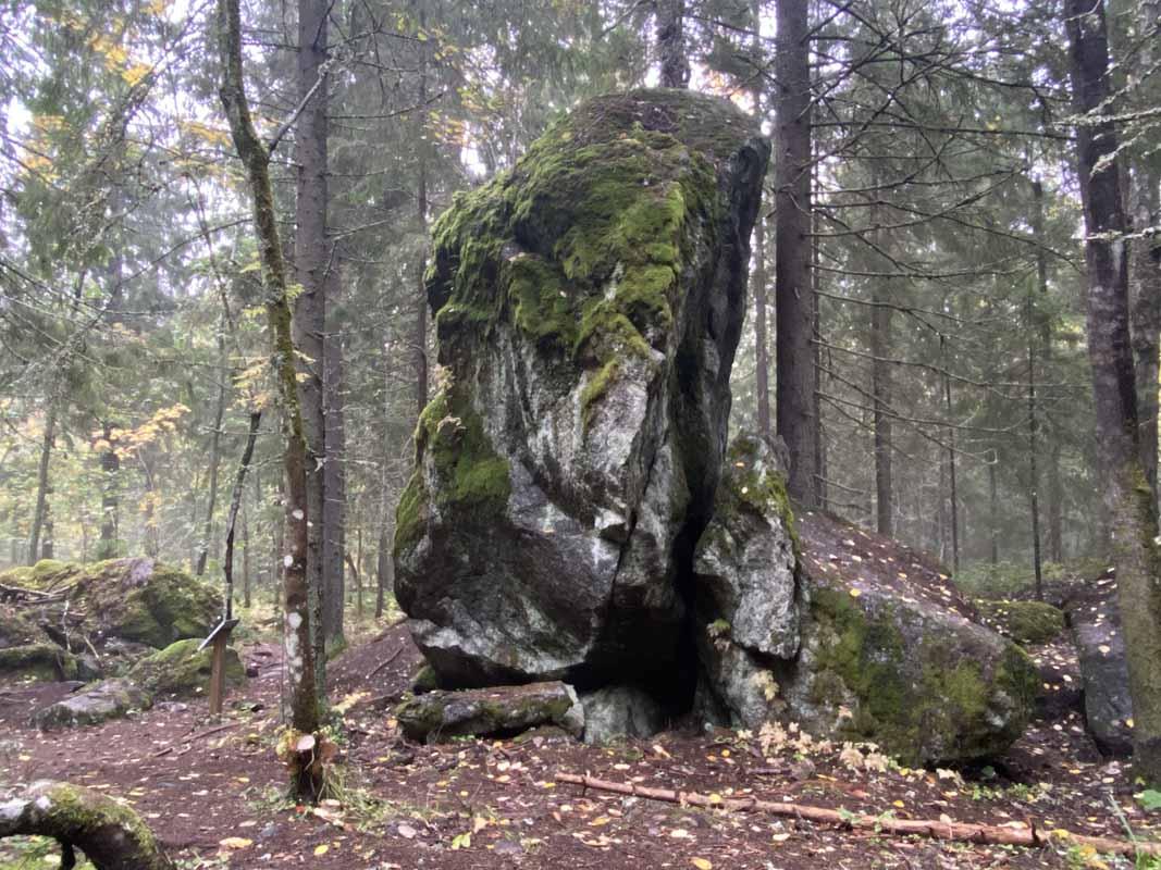 Kammiovuori kivi