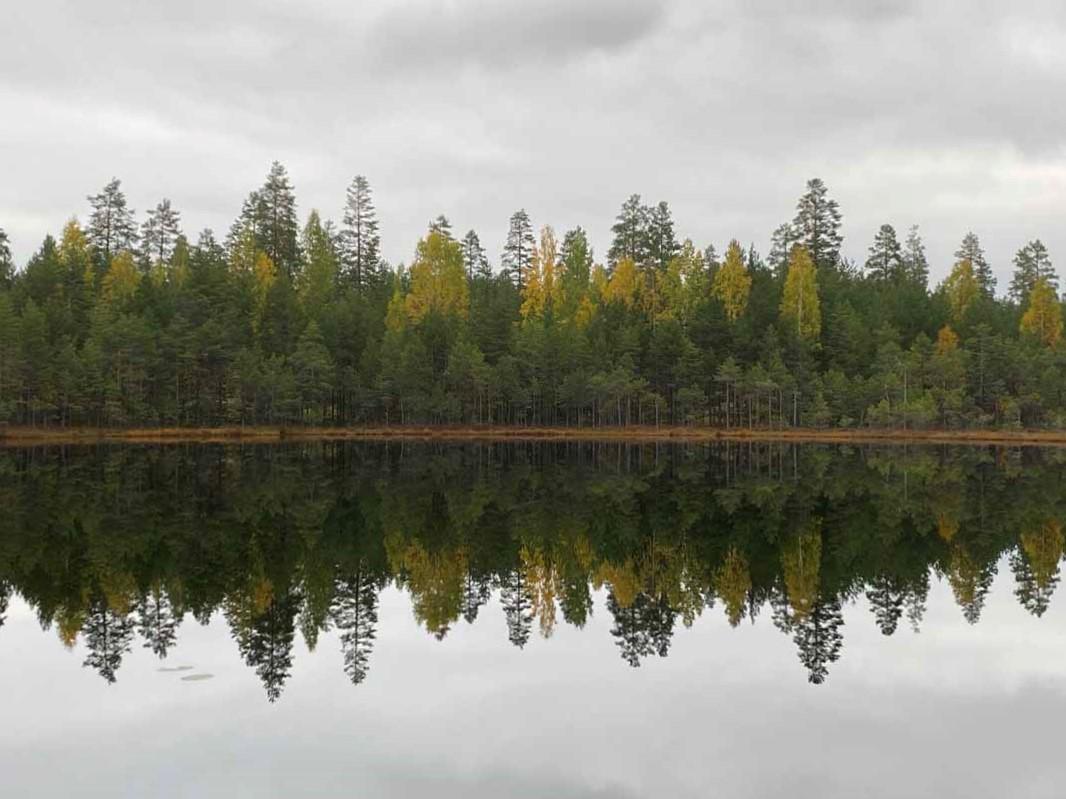 Leivonmäen kansallispuisto Leivonmäki national park Finland