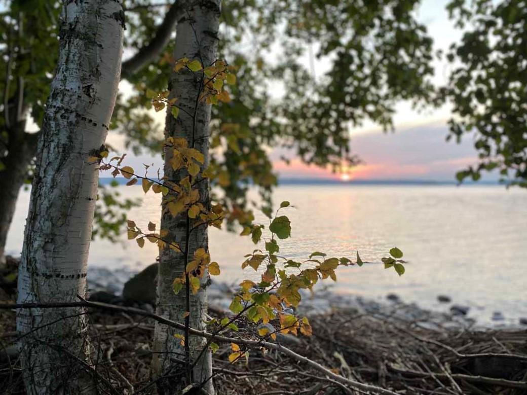 Pulkkilanharju koivu järvi birch lake sunset Finland luontokohteet