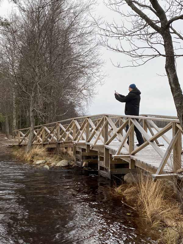 Kyynäränjuova Liesjärvi Liesjärven kansallispuisto Tammela Ilkka