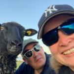 Ne Tammelat lammas