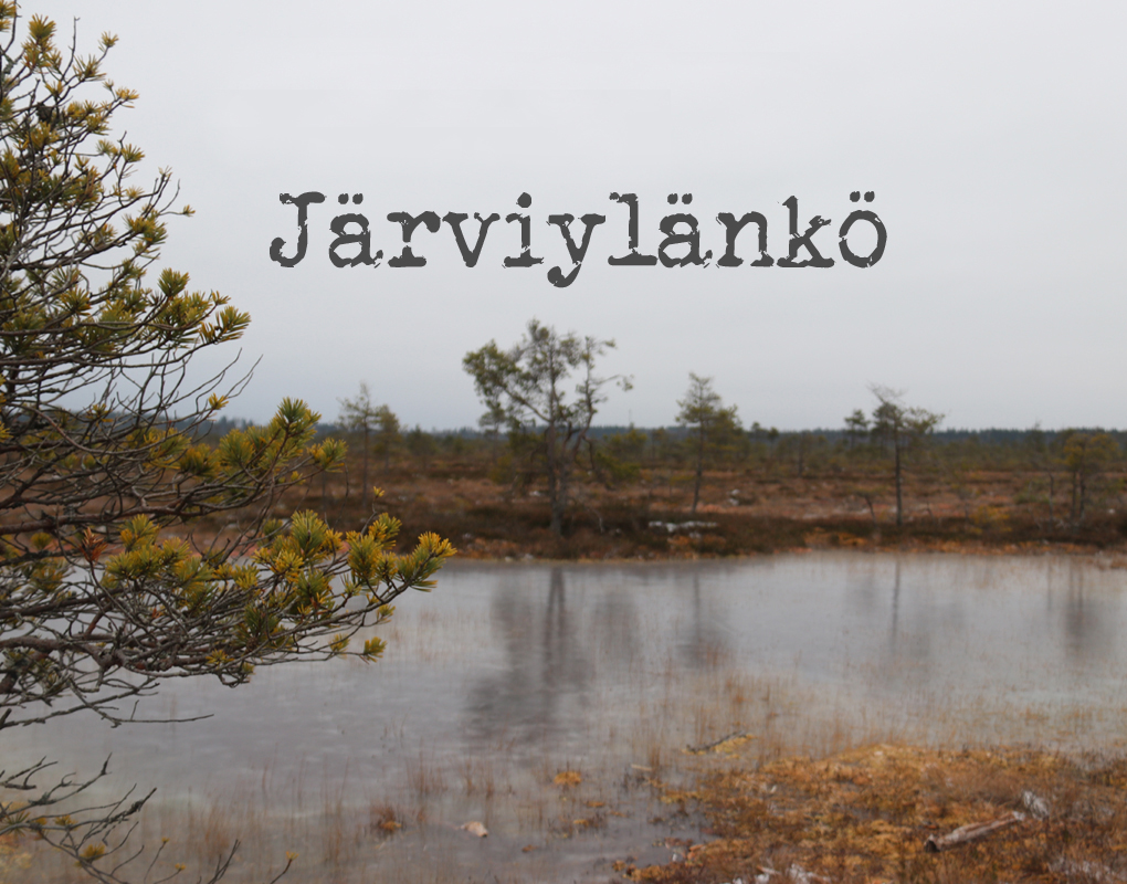 Tammelan järviylänkö Torronsuo