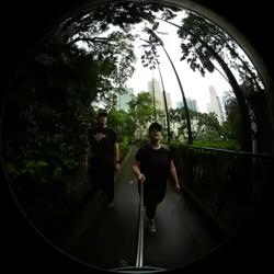 [Hong Kong Botanical Zoological Garden park]